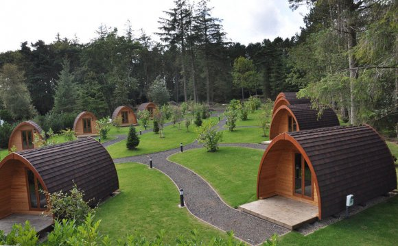 Falcon forest glamping north