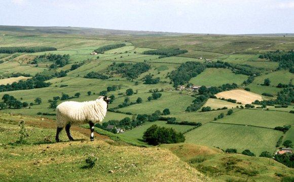 North York Moors - Wikiwand