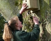 Flamingo Land Head Keeper Sam de Belle putting up a bird nest box in the park (photo courtesy of Andrew R Marshall)