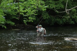 Guided days & Fly Fishing Lessons