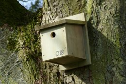One of 45 bird boxes put up by CIRCLE research interns at Flamingo Land Theme Park and Zoo (photo courtesy of Andrew R Marshall)