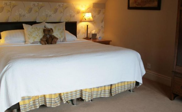 Hotels in Dales