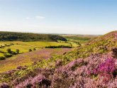 Bed and Breakfast North York Moors