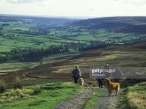 Rosedale, North Yorkshire