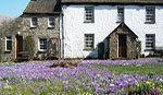 Thwaite Farm Cottage, Sedbergh