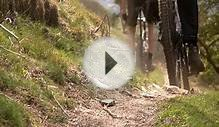 Dales Bike Centre - Mountain biking, Swaledale, Yorkshire