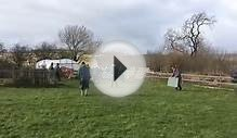Pig Herding - Farm Adventure Activities